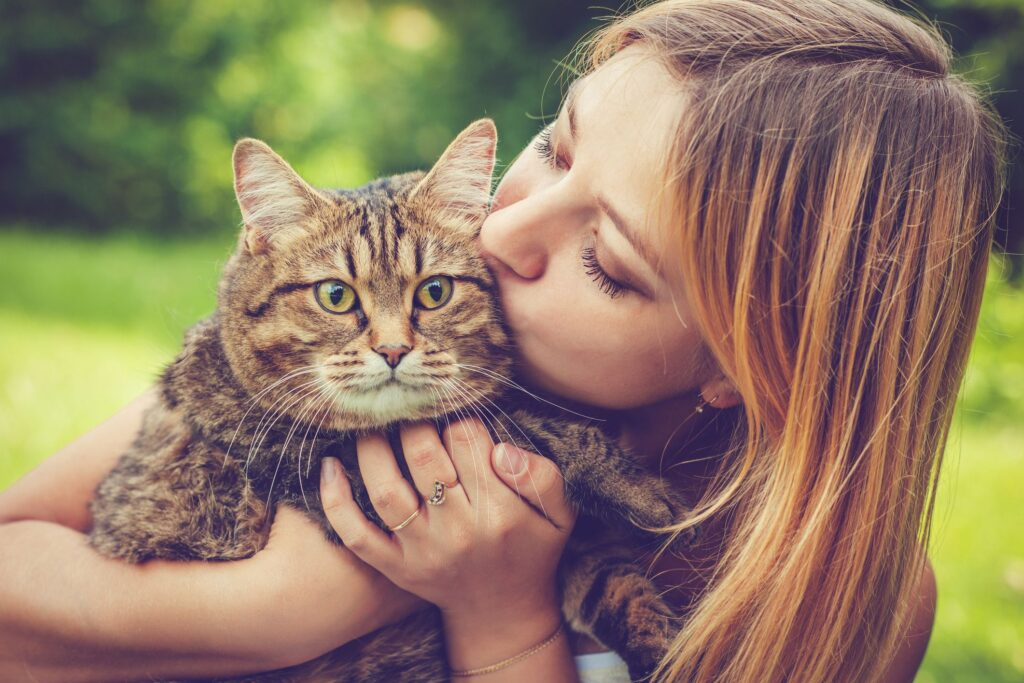 Finding The Right Cat